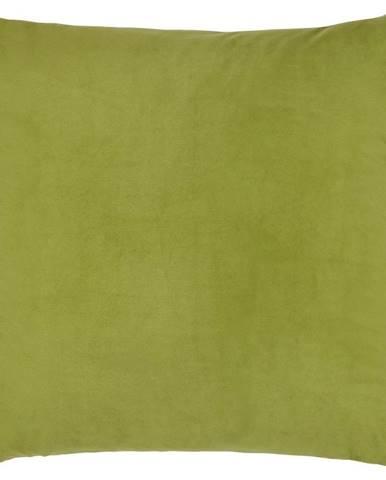 Dekoračný Vankúš Junglelife, 60/60 Cm,zelená
