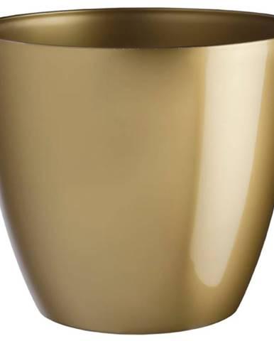 Obal Ella lesk 13 cm zlatá