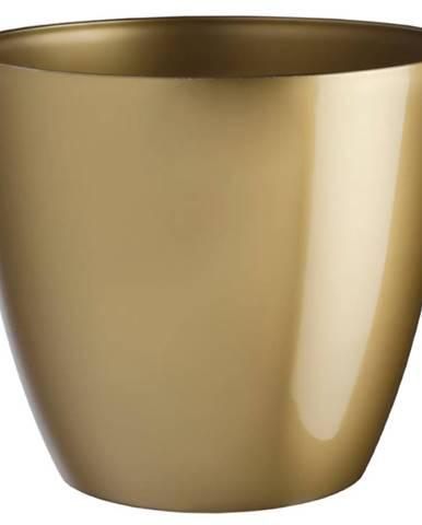 Obal Ella lesk 15 cm zlatá