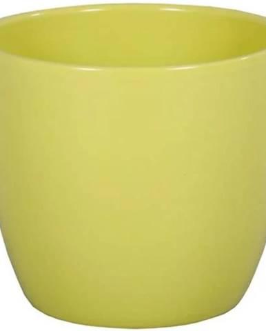 Obal Primus Aromat 13 cm/zelená