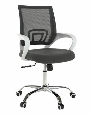 Sanaz Typ 2 kancelárske kreslo s podrúčkami sivá