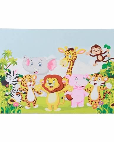 Xander koberec 100x150 cm kombinácia farieb