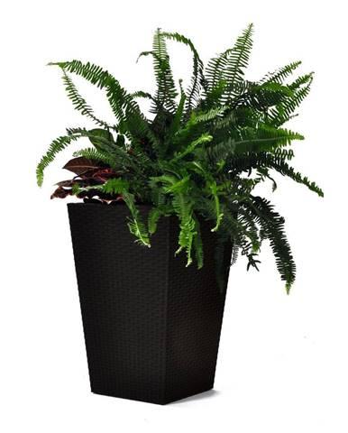 Hnedý záhradný kvetináč Keter Kind, výška 57 cm
