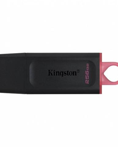 256 GB Kingston USB 3.2