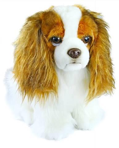 Rappa Plyšový pes King Charles španiel, 25 cm