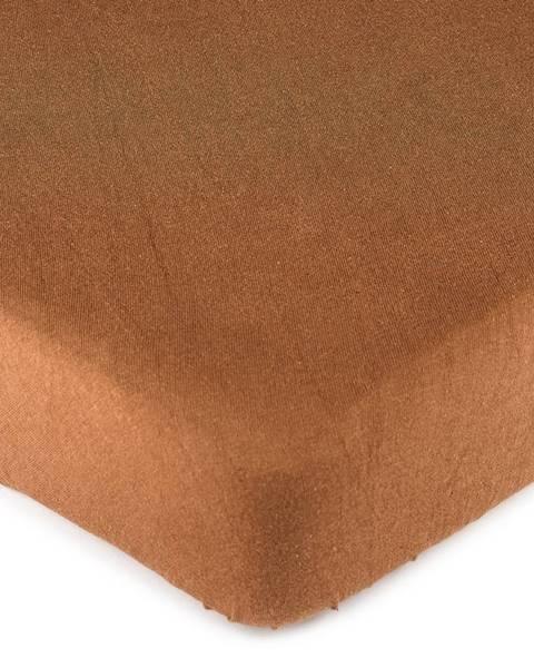 4Home 4Home jersey prestieradlo hnedá, 180 x 200 cm