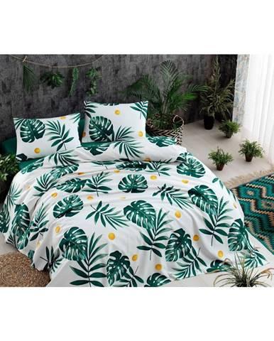 Set bavlneného plédu cez posteľ, plachta a 2 obliečky na vankúš Monstera Green, 200 x 235 cm