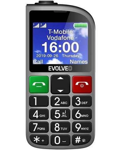 Mobilný telefón Evolveo EasyPhone FM strieborný
